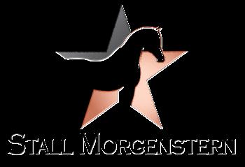 Stall Morgenstern – Pensionsstall